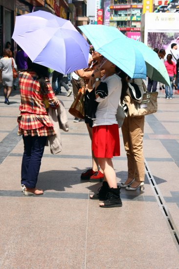 umbrella-group