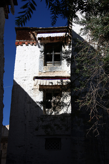 shigatse-windows