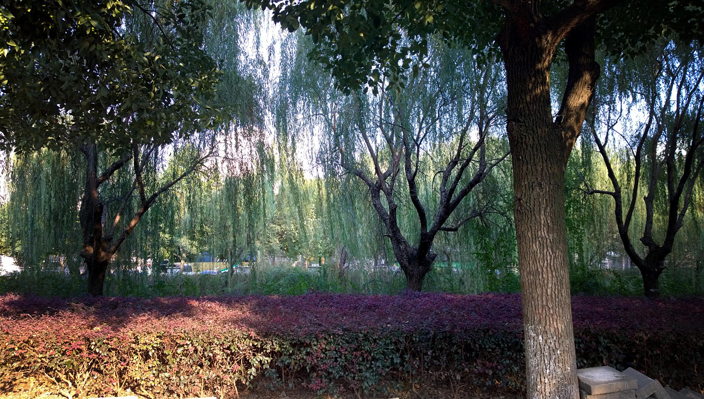 Suzhou SIP park