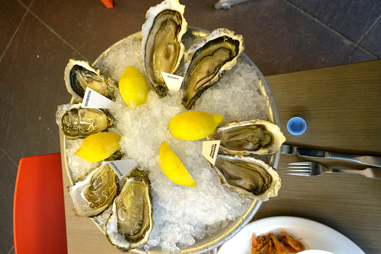 Toinou oysters_opt