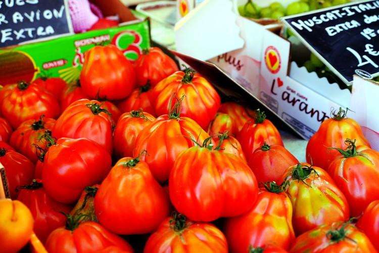 tomates_opt